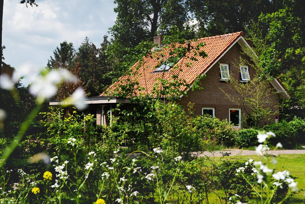 Schwarzwald-huis-kleilutte-2